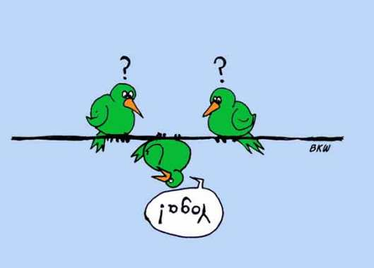 bird yoga cartoon